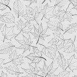 Het naadloze patroon met overzicht verlaat Zwart-wit seizoengebonden illustratie Stock Fotografie