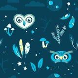 Het naadloze patroon met uilen schiet veren als paddestoelen uit de grond Stock Afbeeldingen