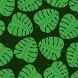 Het Naadloze Patroon van het blad Groene monsterabladeren Vector illustratie Plakboek, gift verpakkend document en textiel Manier stock illustratie