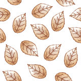 Het naadloze patroon van bladeren Stock Afbeeldingen