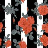 Het naadloze patroon van bloem rode rozen met horizontale strepen en  Stock Afbeeldingen