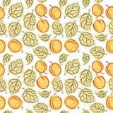 Het naadloze patroon van de abrikoos Royalty-vrije Stock Afbeeldingen