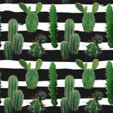 Het Naadloze Patroon van de cactusinstallatie Exotische Tropische de Zomer Botanische Achtergrond Stock Foto's