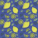 Het naadloze patroon van de citroen Hand getrokken verse tropische citrusvruchten royalty-vrije illustratie