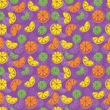 Het naadloze patroon van de citrusvrucht Royalty-vrije Stock Afbeeldingen