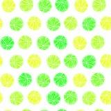 Het naadloze Patroon van de Citrusvrucht royalty-vrije stock foto's
