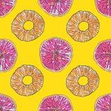 Het Naadloze Patroon van de citrusvrucht Tropische achtergrond vector illustratie