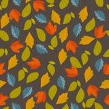 Het naadloze patroon van de herfst Stock Foto's