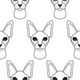 Het Naadloze Patroon van de kat Stock Foto's