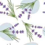 Het naadloze patroon van de lavendel royalty-vrije stock foto's