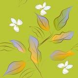 Het naadloze patroon van de lente Royalty-vrije Stock Foto