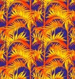 Het naadloze patroon van de palm Tropische bladerenachtergronden Stock Afbeeldingen
