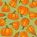 Het naadloze patroon van de pompoen. Royalty-vrije Stock Afbeeldingen
