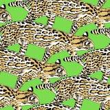 Het naadloze patroon van de visserijkat Royalty-vrije Stock Fotografie