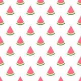 Het naadloze patroon van de watermeloen Vector illustratie Stock Afbeeldingen