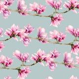 Het naadloze patroon van de waterverfmagnolia De hand schilderde bloemen en groene die bladeren op tak op pastelkleur blauwe acht stock foto's