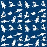 Het naadloze patroon van haaiensilhouetten Wit op blauw Royalty-vrije Stock Afbeelding