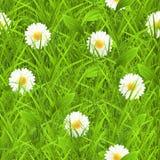 Het naadloze patroon van het gras Stock Afbeelding