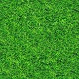 Het naadloze patroon van het gras. Stock Foto's
