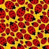 Het naadloze Patroon van het Lieveheersbeestje Stock Foto's