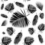 Het naadloze patroon van het palmblad