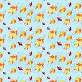 Het naadloze patroon van onzelieveheersbeestjes en van bladeren Stock Foto's