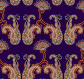 Het naadloze patroon van Paisley Royalty-vrije Stock Foto