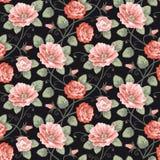 Het naadloze patroon van rozen Stock Foto's