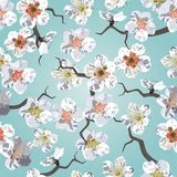 Het naadloze patroon van Sakura stock illustratie