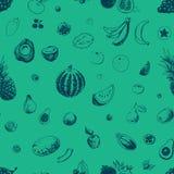 Het naadloze patroon van vruchten Het kan voor prestaties van het ontwerpwerk noodzakelijk zijn vector illustratie