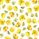 Het naadloze patroon van waterverf gele bloem isoleert op witte bedelaars Stock Foto's