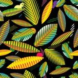 Het naadloze patroon, vat geometrische tropische bladeren samen Stock Afbeeldingen