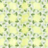 Het naadloze patroona boeket van madeliefje bloeit - bloemen, bladeren op waterverfachtergrond Collage van bloemen, bladeren vector illustratie