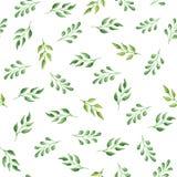 Het naadloze waterverfpatroon met groen doorbladert Royalty-vrije Stock Afbeeldingen