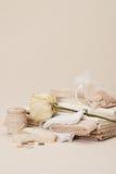 Het naaien en de Uitrusting van de Borduurwerkambacht Droog nam toe Stock Fotografie