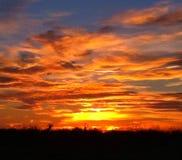 Het naderbij komen zonsopgang Royalty-vrije Stock Afbeeldingen
