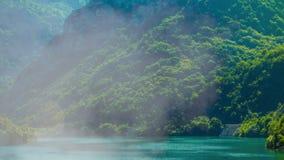 Het naderen van het kader van de bergrivier door de bomen en de mist stock videobeelden