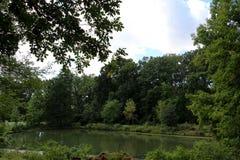 Het Nationale Arboretum van Verenigde Staten stock foto's