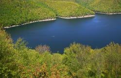 Het nationale bos van Allegheny royalty-vrije stock fotografie