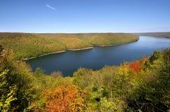 Het nationale bos van Allegheny royalty-vrije stock foto