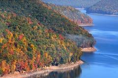 Het nationale bos van Allegheny royalty-vrije stock afbeeldingen