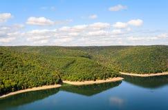 Het Nationale Bos van Allegheny stock foto's