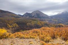 Het Nationale Bos van het Zout manti-La Stock Afbeeldingen