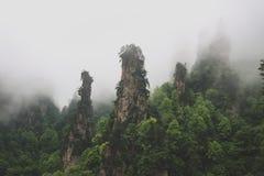Het Nationale BosPark van Zhangjiajie Stock Afbeeldingen