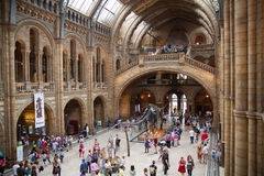 Het nationale Geschiedenismuseum, is één van het favorietste museum voor families in Londen royalty-vrije stock fotografie
