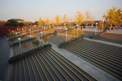 Het Nationale Grote Theater van China Stock Foto
