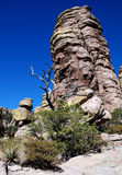 Het Nationale Monument van Chiricahua Royalty-vrije Stock Fotografie