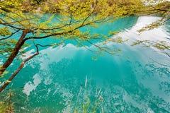 Het Nationale Park Dalmatië, Kroatië van Plitvicemeren Royalty-vrije Stock Afbeelding