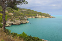 Het Nationale Park van Apuliacoastgargano: Baia Di Campi strand, vieste-Italië Stock Foto's