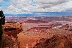 Het nationale park van Canyonlands Stock Fotografie